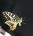 Farfalla 29