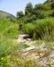 Ambiente del fiume Timeto: scorcio 10