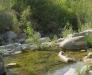 Ambiente del fiume Timeto: scorcio 2