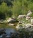 Ambiente del fiume Timeto: scorcio 3